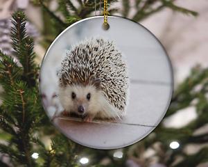 Cute Sweet Hedgehog Pet Animal Nature Christmas Ornament, Christmas Gift