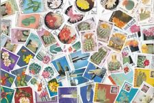 Collection 50 diff. stamps - Cactussen / Cactus / Kakteen (Y1004)