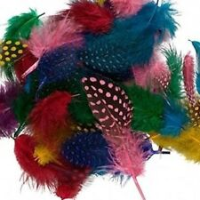 """0.1 Ounce Guinea 2-4"""" Long Feather Mix - Approximately 95 Feathers"""
