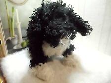 Ganz Webkinz . Portuguese Water Dog . Hm439 . No Code . Retired