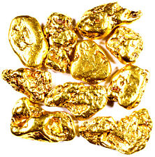 10 PIECE LOT ALASKAN YUKON BC NATURAL PURE GOLD NUGGETS FREE SHIPPING (#L252)
