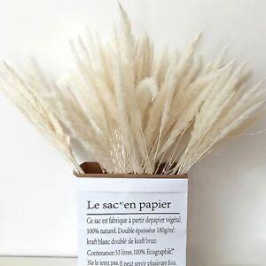 30x  Getrocknetes Pampasgras Weiß extra fluffig Trockenblumen Geschenkverpackung