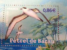 FRANCE 2007, timbre 4036, OISEAUX, PETREL DE BARAU, neuf**, MNH BIRDS