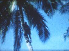 2 1950's Standard 8mm Cine Films, Kuala Lumpur, Sea Lions, Beach Scenes etc.