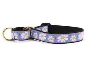 Dog Puppy Martingale Collar - Up Country - Made In USA - Daisy - S, M, L, XL