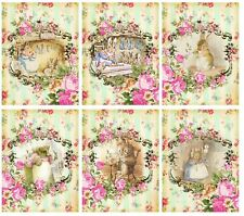 Beatrix Potter Animals - Glossy Finish Card Topper -  Crafts Embellishment