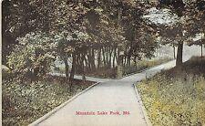 A75/ Mountain Lake Park Maryland Md Postcard c1910 Boardwalk Sidewalk