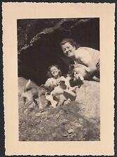 YZ7742 Bussoleno 1943 - Lackschuhe Sneakers Hunde Der Pian Roc Beim Schule, Foto