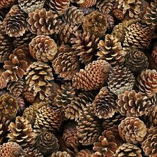 Pine Cones Brown packed By the yard cotton print fabric Elizabeth Studios