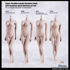1/6 Phicen Flexible Steel Skeleton Seamless Pale Middle Bust S01A Body TBleague
