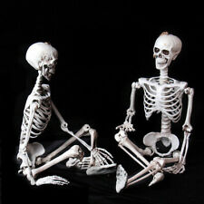 Halloween Poseable Horrible Skeleton Party Prop Decor Human Anatomy Models Plus+