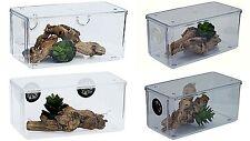 Tarantula/Spider/Scorpion Mini Vivarium,enclosure Various Options Availible