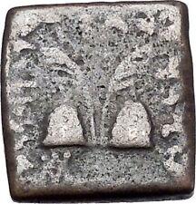 ANTIALKIDAS 145BC Baktrian Indo- Greek Ancient Coin of India Zeus Gemini i46912
