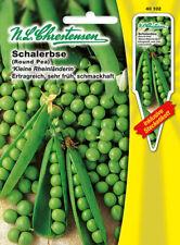 Schalerbse Kleine Rheinländerin,Saatgut,Pisum sativum,Gemüse,Chrestensen,SE