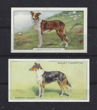 Rare 1937 & 1938 Uk Dog Art Cigarette Card Collection Set 2 Smooth Coated Collie