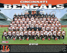 2012 CINCINNATI BENGALS NFL FOOTBALL 8X10 TEAM PHOTO
