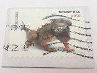 United States Stamp Canceled Collectors USA Forever USA pets eguanas
