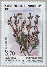 ST. PIERRE MIQUELON SPM 1996 705 625 Moose & Flechten Plants Flora Pflanzen MNH
