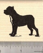 Cane Corso Rubber Stamp G12106 WM italian, dog, large