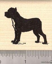 Cane Corso Rubber Stamp G12106 Wm italian, dog, large