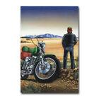 David Mann Ghost Rider Art Silk Canvas Poster 13x20 24x36 inch
