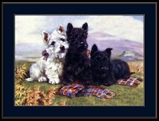 English Picture West Highland Scottish Terrier Dog Art