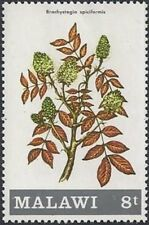REPUBLIC OF MALAWI -1971- Flowering Shrub - Brachystegia spiciformis - MNH  #174