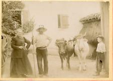 France, Paysans et leurs buffles, ca.1900, vintage citrate print Vintage citrate