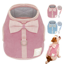 Escape Proof Cat Walking Jacket Harness & Leash for Small Dogs Chihuahua Kitten