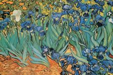Garden of Irises Poster! Van Gogh Painting Beauty France conductor of illness