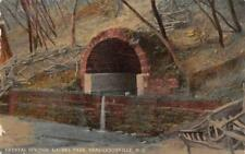 CRYSTAL SPRINGS LAUREL PARK HENDERSONVILLE NORTH CAROLINA POSTCARD 1913