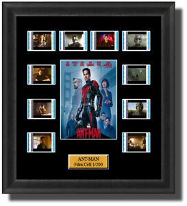 Backlight Ant Man 2015 Film Cell Memorabilia FilmCells