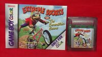 Extreme Sports Berenstain Bears + Manual - Nintendo Game Boy Color GB TESTED GBC