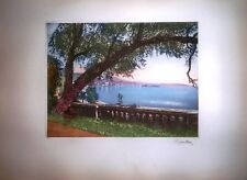 1900's Hand Colour & Signed Etching Tree by Lake