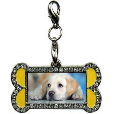 Designer Dog Bone Shaped Pet Bling Collar ID Tag Diamante Design Picture Frame