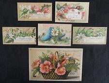 """Lot 6 School """"Reward of Merit"""" Cards Botanicals Fruit Shoe Colorful Named Dated"""