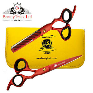 Professional Salon Hairdressing Scissors Barber Hair Cutting/Thinning Shears