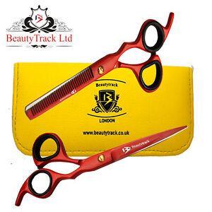 Professional Salon Hairdressing Scissors Barber Hair Cutting/Thinning Shears 6.0