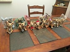 Lot of 13 Talking Taco Bell Stuffed Animal Chihuahua Dog