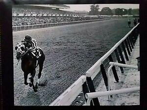 SECRETARIAT 31 lengths GREAT 8 X 10 BELMONT STAKES HORSE RACING UPGRADE PHOTO!