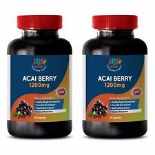 Antioxidant Water Filter System - Acai Berry Extract 1200mg 2B - Acai Extract