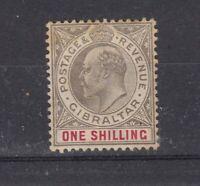 Gibraltar KEVII 1904 1/- SG61 MLH (Slight Tone) JK843