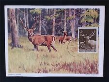 AUSTRIA MK 1959 1065 JAGDWILD HIRSCH DEER MAXIMUMKARTE MAXIMUM CARD MC CM c6503