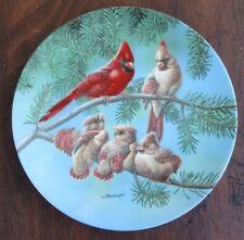 The Singing Lesson Collector Plate Backyard Harmony Cardinal Bird Joe Thornbrugh