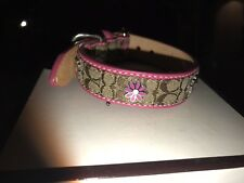 XS DAISY COACH DOG COLLAR AUTHENTIC