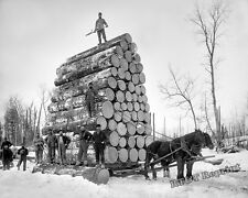 Photograph of  Michigan Loggers in the Year 1897c    8x10