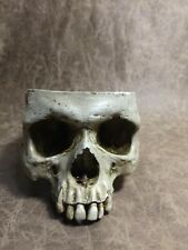 Male Real Human Skull Replica Drinking cup bowl food safe pet bowl -Zane Wylie