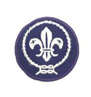 Vintage Official BSA Boy Cub Scout Purple World Crest Patch Fleur De Lis