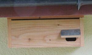 Swift nest box natural timber Welsh Larch Stainless screws Nesting Bird