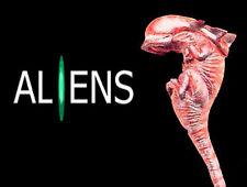 Movie Alien Queen Xenomorph Embryo New Born Foetus 1/1 Figure Vinyl Model Kit
